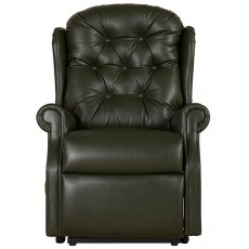 Celebrity Woburn Petite Fixed Chair Leather (Grade